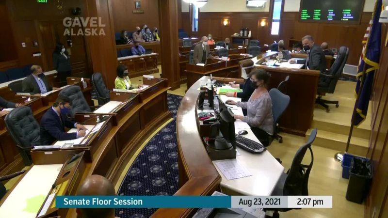 Senate Floor Session - preview image