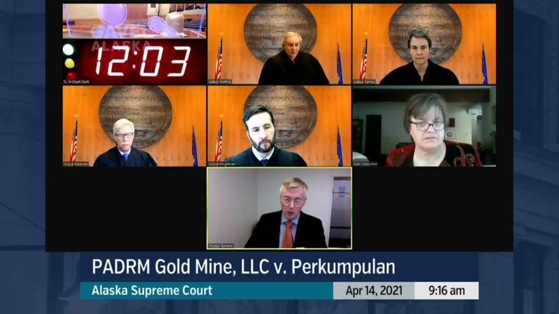 PADRM Gold Mine, LLC v. Perkumpulan - preview image